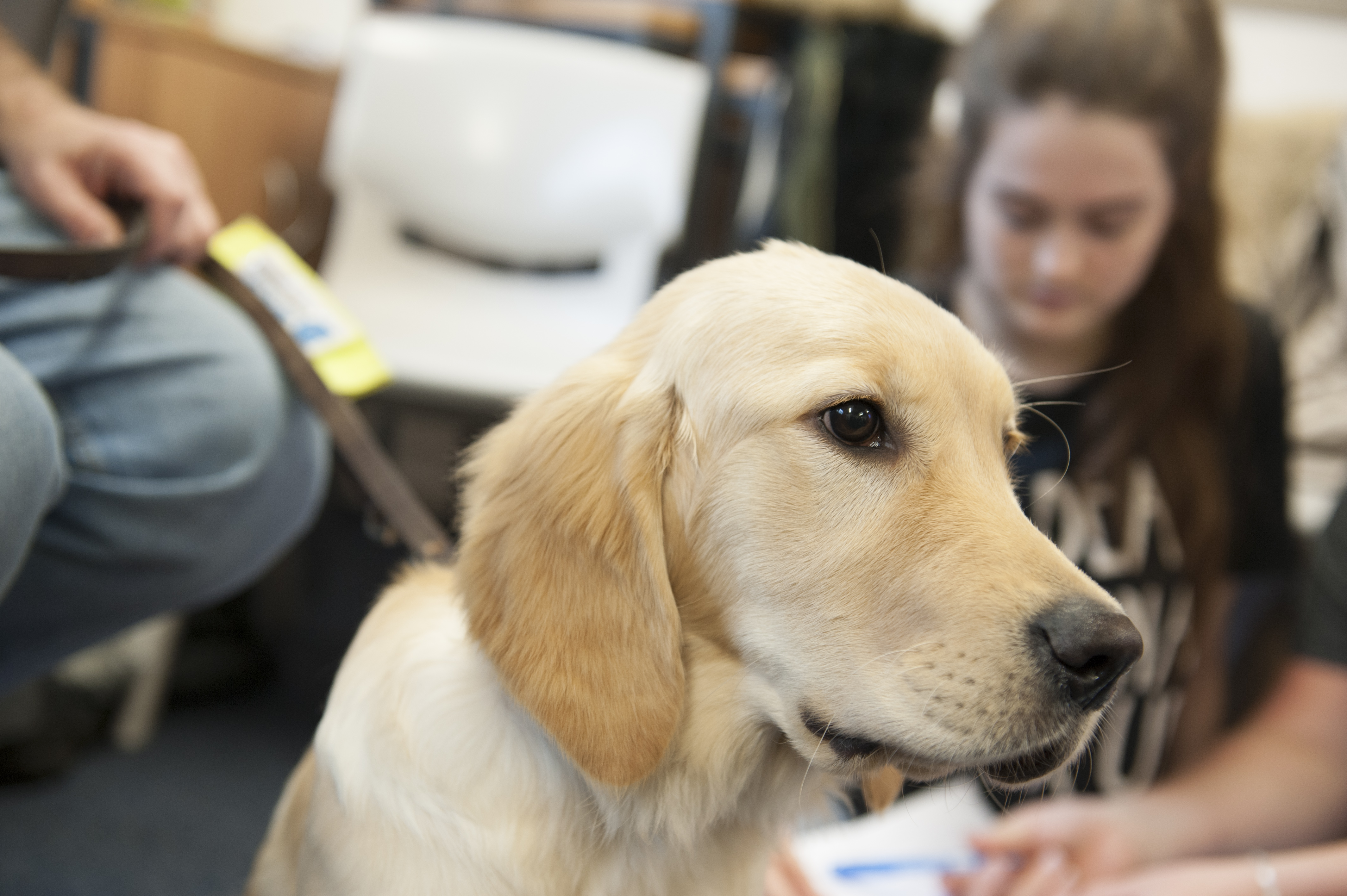 Animal Care Congress Set To Become Annual Event