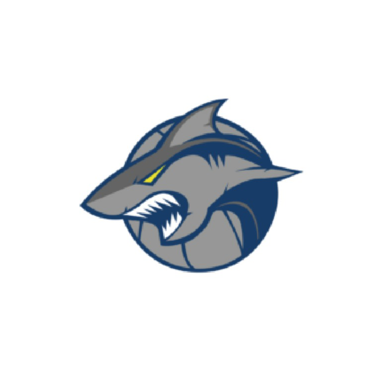Sheffield Sharks Learning and Development Academy